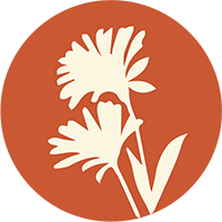 DOWNLOAD Wildflower Guide